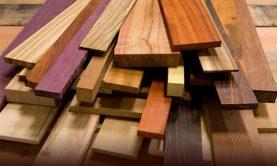 معرفی انواع چوب و کاربرد آنها